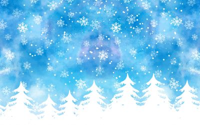 Přejeme Vám krásné Vánoce